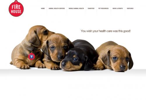 Firehouse Animal Health Center | Web Design